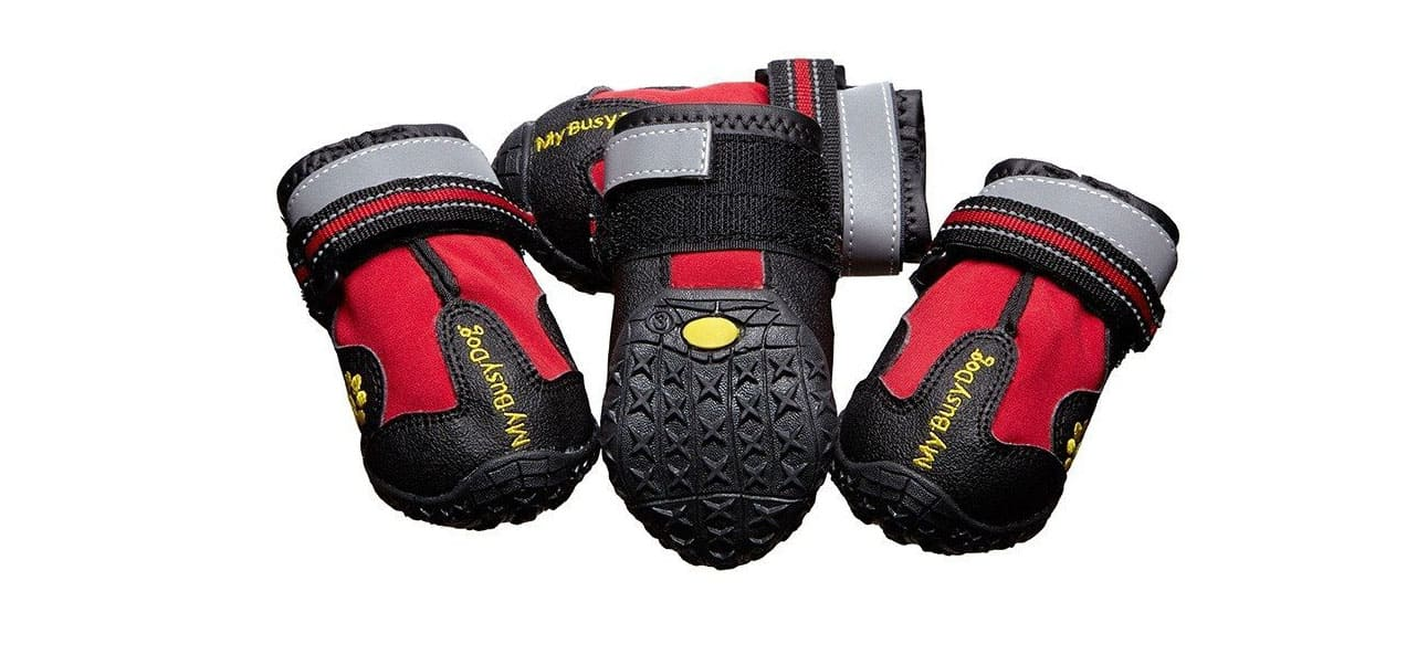 Dog-shoes