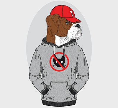 Rapper Dog Names Inspired By Hip Hop Culture My Dogs Name